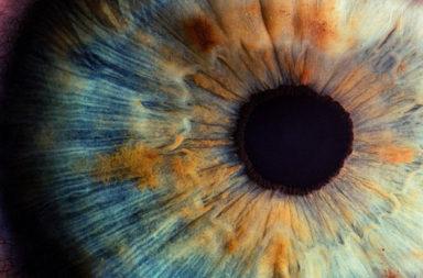 تتضرر أجزاء من شبكية عين مراهق بسبب مؤشر ليزر - مخاطر التحديق المباشر في مؤشرات الليزر - مدى حساسية العين والبصر - التلف الشبكي للعين