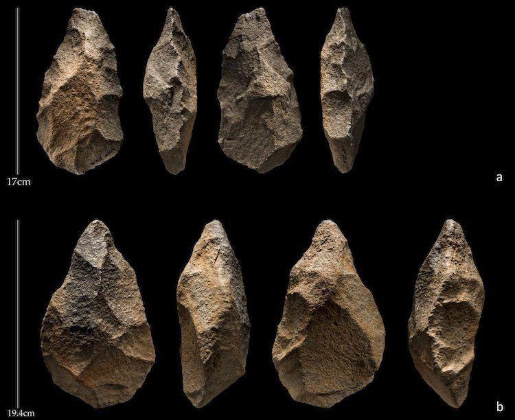 قد يكون الإنسان القديم عاش إلى جانب البشر المعاصرين في شبه الجزيرة العربية