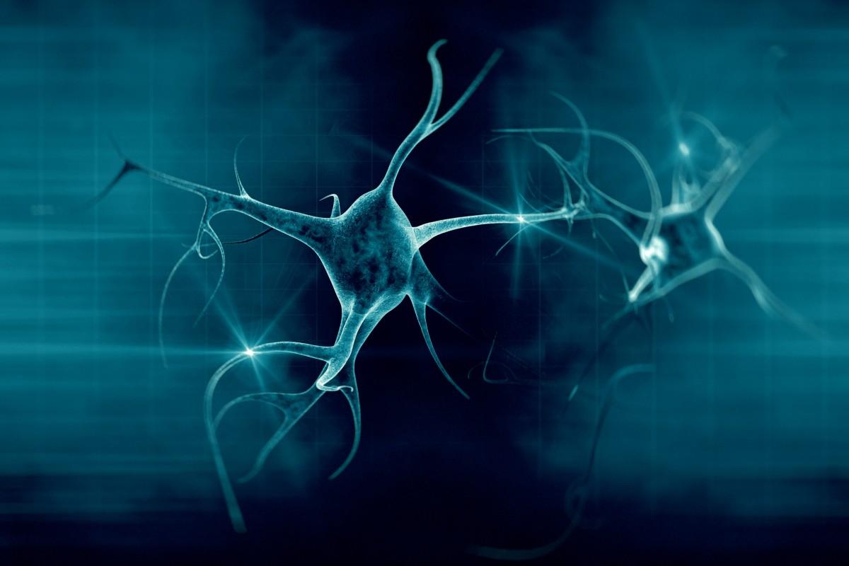 لأول مرة: تصوير فيديو لكيفية تخلص الدماغ من الخلايا العصبية التالفة