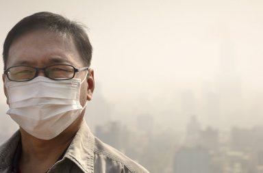الهواء الملوث يسبب زيادة الوزن كيف يحدث ذلك - خطر الإصابة بالسمنة والسكري والاضطرابات الهضمية - الأمراض المزمنة - بكتيريا الأمعاء