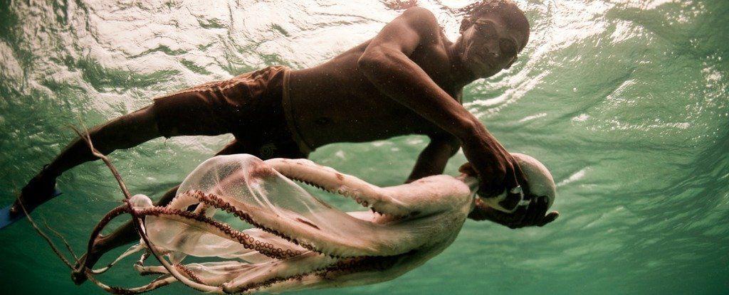 شعب الباجاو: يُمضي هؤلاء مُعظم حياتهم في البحر (في المياه)