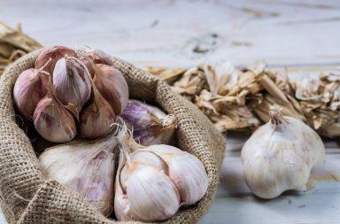 ما هي فوائد الثوم - فوائد الثوم الصحية المحتملة والأبحاث التي تدعم هذا - الثوم من أكثر الخضراوات المُستخدمة في الطبخ والتوابل