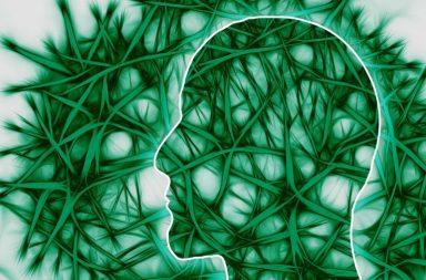 تحديد خلايا عصبية حساسة للجلوكوز تنظم مستوى السكر في الدم - نقص سكر الدم - الخلايا العصبية الحساسة للجلوكوز في المخ - التنميط الجيني