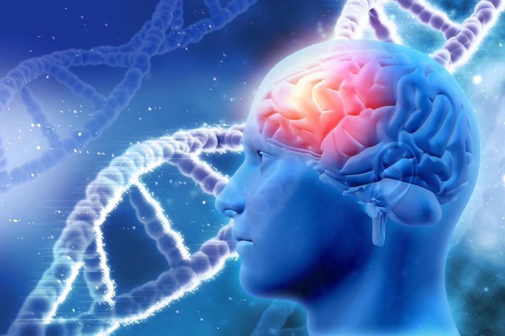 استهداف جين يوقف مرض ألزهايمر