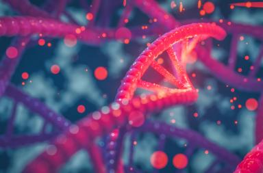 الجينات تزرع بذور الأمراض النفسية العصبية قبل الولادة - القشرة أمام الجبهية في الدماغ - أمراض عصبية نفسية - الاضطرابات العصبية والنفسية والمعرفية والعاطفية
