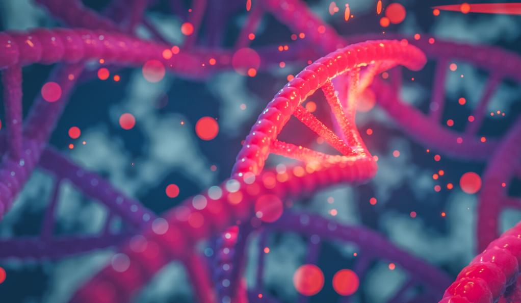 الجينات تزرع بذور الأمراض النفسية العصبية قبل الولادة