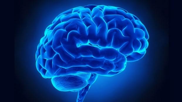 علماءٌ يكتشفون وجود 97 منطقة دماغية جديدة