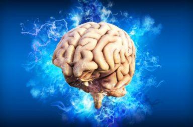 تلف الدماغ: الأسباب والأعراض والتشخيص والعلاج - ما هي أنواع الأذى التي تؤدي إلى تلف الدماغ - الأذى الدماغي brain injury - إصابة رضحية