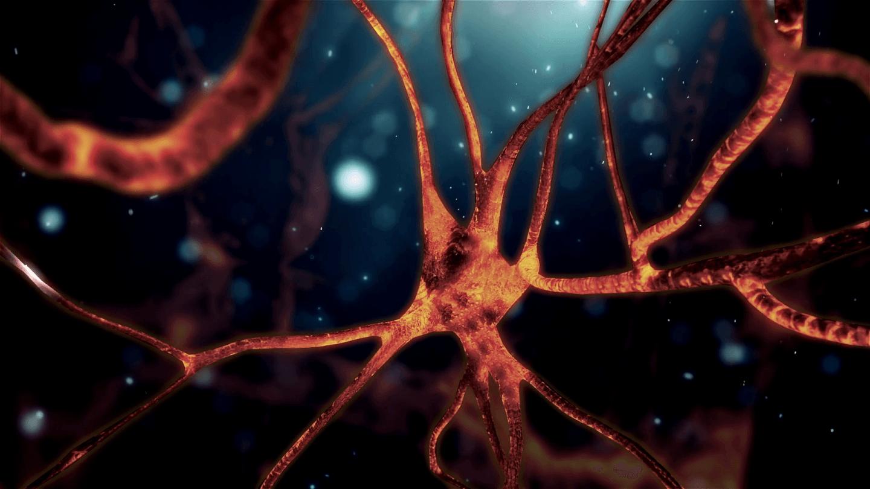 فيزيائيون يبطلون تفسيرًا لكيفية عمل الخلايا العصبية دام لما يزيد عن مئة عام!