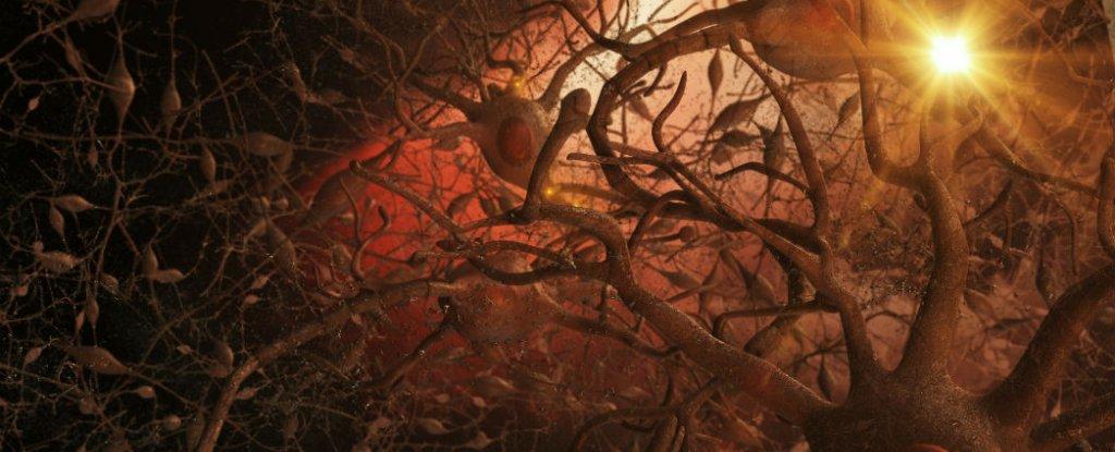 علاج جديد لمرض ألزهايمر يعيد وظيفة الذاكرة بالكامل !