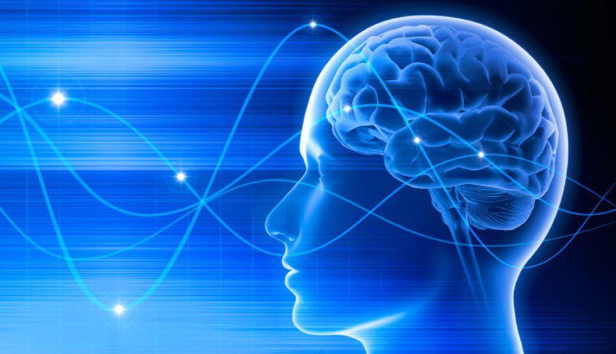 يستطيع الذكاء الصناعي اليوم أن يفك تشفير الكلمات عن طريق أمواج الدماغ