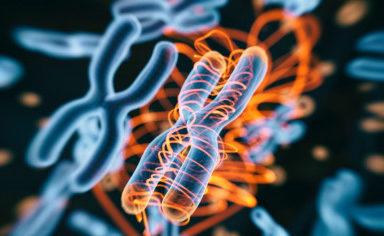 ترخيص حقنة تعمل بتقنية مبتكرة في علاج ارتفاع الكوليسترول - دواء إنكليسيرن من أجل علاج ارتفاع الكوليسترول يعمل بتقنية إسكات الجين (Gene Silencing)