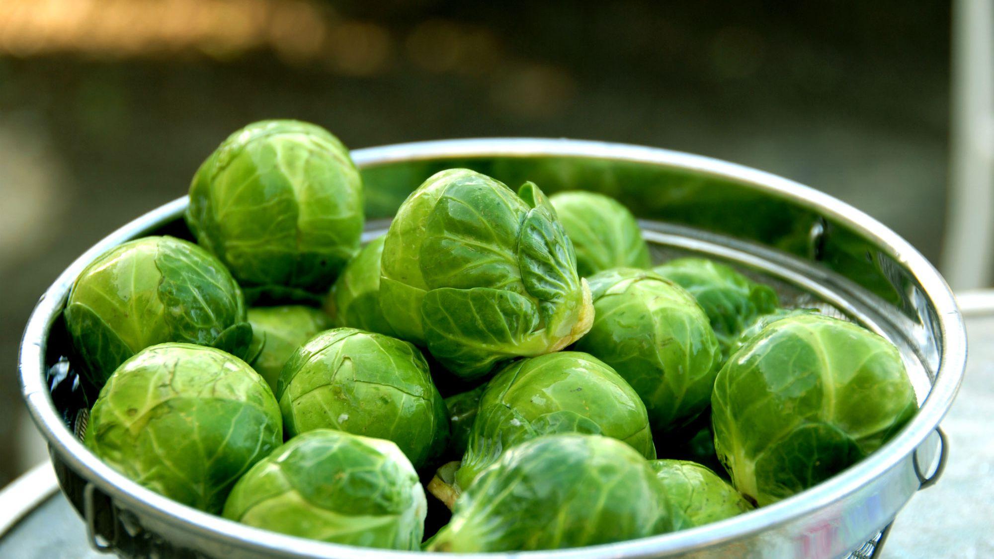 عشرون نوعًا من الأغذية الغنية بفيتامين سي - فيتامين سي - فيتامين موجود في الكثير من الأطعمة وخاصة الخضراوات والفواكه - بطء التئام الجروح