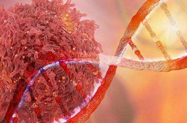 الجرعات المنخفضة من الإشعاع تؤهب لظهور خلايا سرطانية تحول الخلايا الطبيعية في الأنسجة السليمة إلى خلايا سرطانية الطفرات الجينية