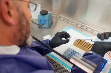 كيف يمكن الكشف عن فيروس كورونا المستجد - مجموعات اختبار SARS-CoV-2 - صنع ملايين أو بلايين النسخ لأجزاء محددة من DNA - اختبار الفيروس