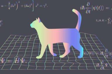 هل يمكن أن توجد قطة شردونجر في الحقيقة قد يجيبك الفيزيائيون قريبًا - إمكانية الوجود في أكثر من مكان مختلف في نفس الوقت - التراكب الكمي - التراكب المكاني