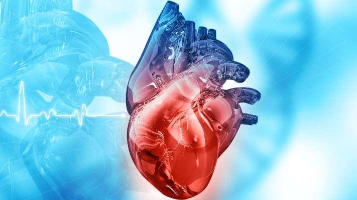 عيب الحاجز البطيني: الأسباب والأعراض والتشخيص والعلاج