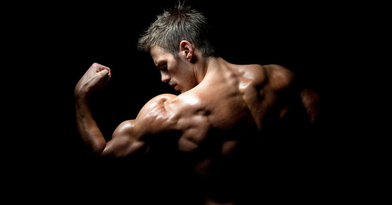 كيف تنمو العضلات؟
