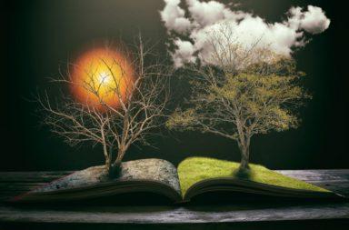 هل حان وقت إعادة تعريف الفصول الأربعة مع تغير مناخ الأرض؟ - تصبح المواسم الانتقالية مثل الربيع والخريف أقصر بسبب تغير المناخ العالمي؟ - الانقلاب الشتوي