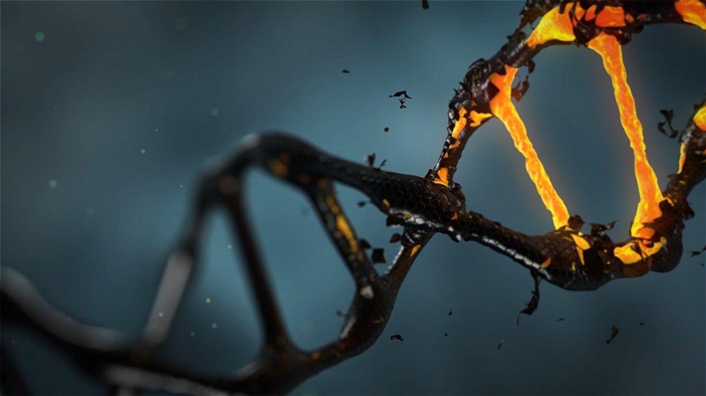 دراسة مفاجئة تكشف أن أجسام الأشخاص الأصحاء مليئة ب الطفرات الجينية