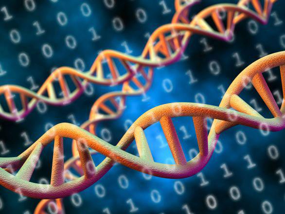 مقدمة إلى المعلوماتية الحيوية