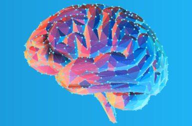 هل نسيان اسم أو كلمة يعني إصابتي بالخرف - ألزهايمر هو أشهر أمراض الخرف - عدد حالات الخرف في الولايات المتحدة - الشيخوخة - خسارة القدرات العقلية
