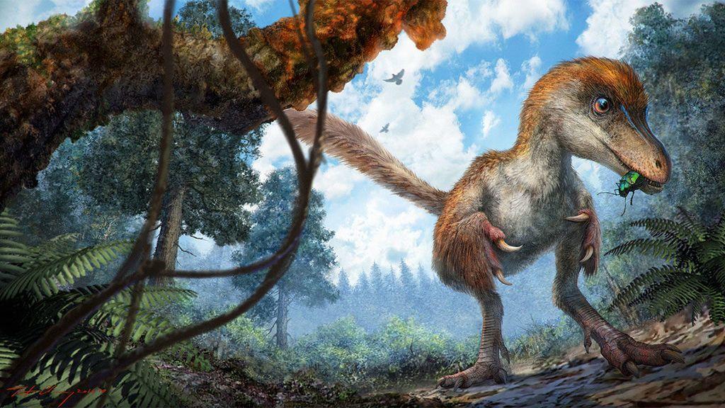 تطور الريش قبل ملايين السنين من ظهور الطيور أو حتى الديناصورات