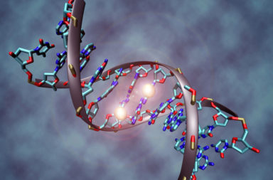 اكتشاف آلية للتعبير الجيني - التعليمات التي تزود خلايانا بالمعلومات التي تحتاج إليها لتكوين أجزاء الجسم البشري - البروتين «رو» - التعبير الجيني