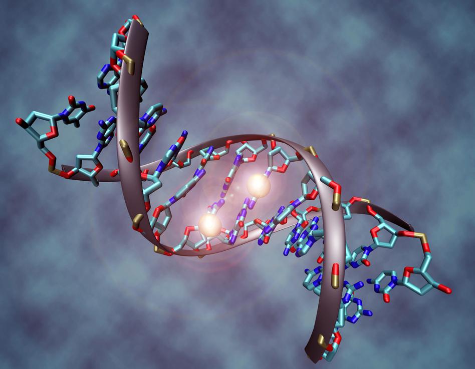 اكتشاف آلية للتعبير الجيني ستغير الكتب الطبية