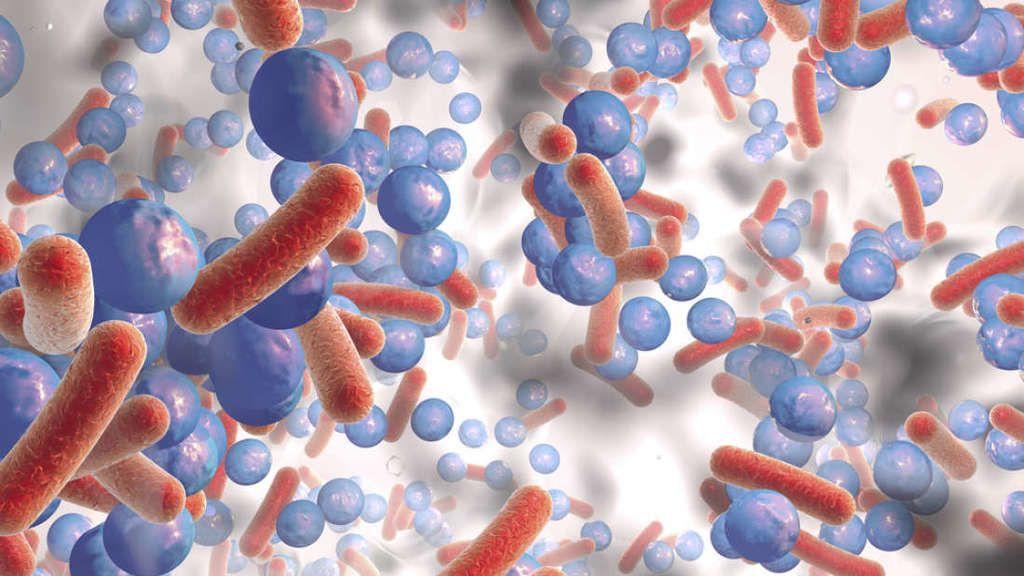 هل يمكن أن يوفر العلاج المناعيّ حلًا فعالًا للإصابة بجراثيم مقاومة للمضادات الحيوية؟