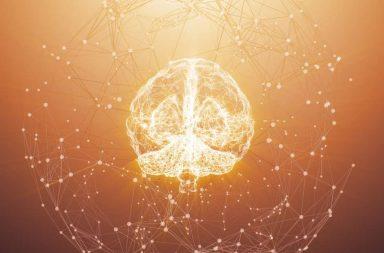 جوجل تطور برنامجًا يسمح للذكاء الاصطناعي بالتطور دون تدخل بشري - التعلم الآلي التلقائي - تمكين خوارزميات التعلم الآلي من التحسن - الخوارزميات