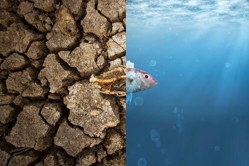 هل تظن أن التغير المناخي ليس أمرًا عاجلًا؟ انظر لما أحدثه بسواحل أستراليا