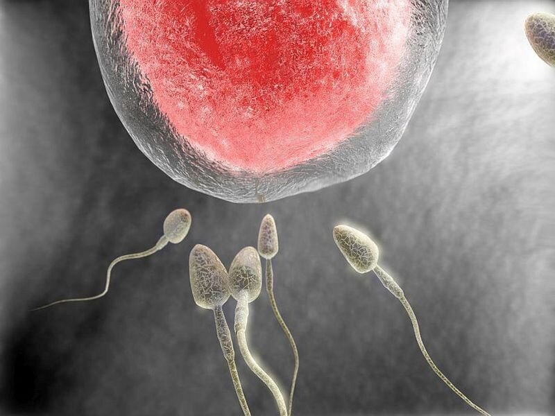 اختيار الجنين اعتمادًا على جيناته