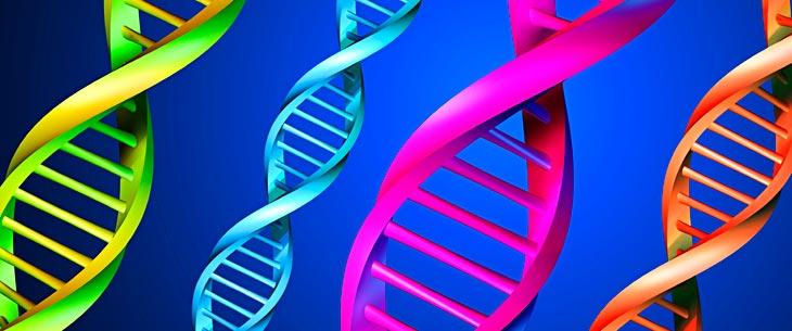 ما هو علم الوراثة الدوائي ؟