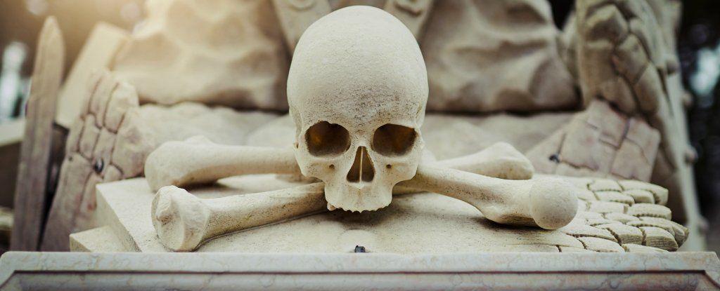 كيفَ تخلّصَ الإنسانُ من جثثِ أبناء جنسهِ سابقًا وحاليًا؟