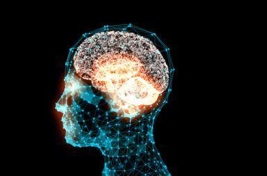 دراسة جديدة: للكالسيوم دور في قوة الذاكرة موت الخلايا العصبية الكالسيوم والخلايا العصبية فائدة الكالسيوم للدماغ المشبك العصبي
