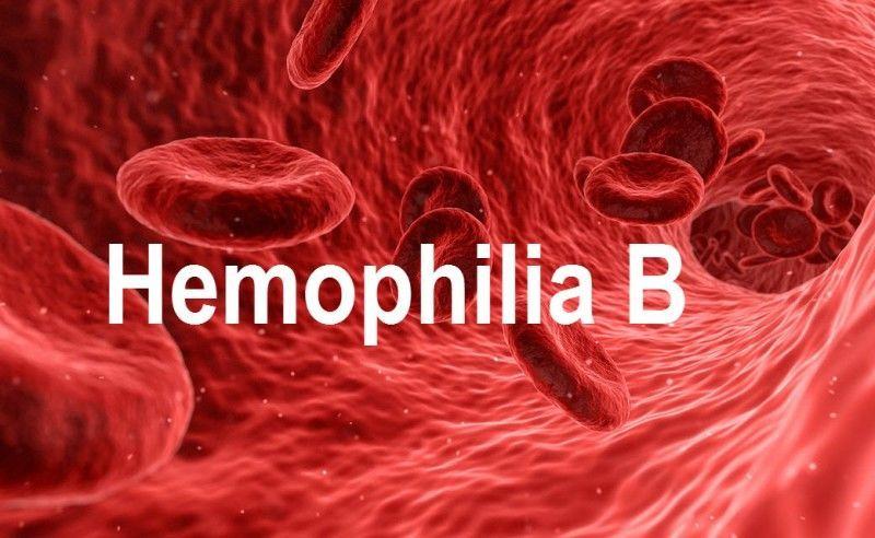 الهيموفيليا B - الناعور B