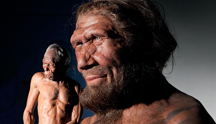 هل ما زال الجنس البشري يتطور؟