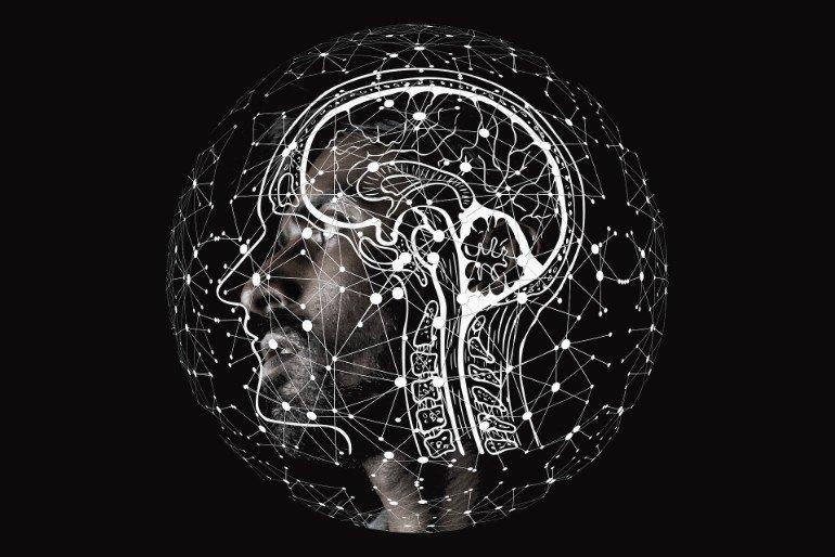 السعادة وتطور حجم الدماغ