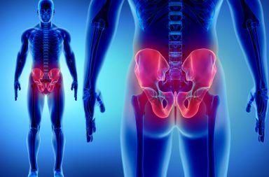 كسر مفصل الفخذ (كسر الورك) الأسباب والأعراض والتشخيص والعلاج علاج الورك المكسور عظم الفخذ عظم الحوض مفصل الفخذ عظم الورك الكسور