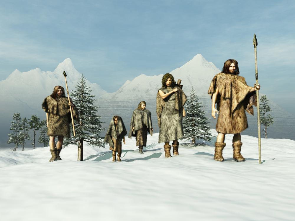ما هي الحيوانات التي عاشت على الأرض خلال فترة العصر الجليدي ؟ - ما هي العصور الجليدية التي مرت بها الأرض؟ - فترات البرودة على الأرض