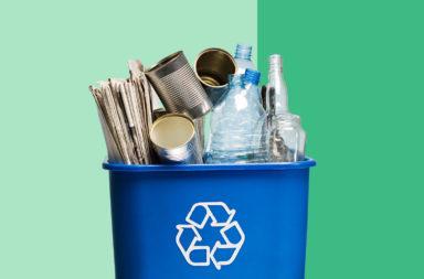 الأخطاء التي نرتكبها عند إعادة تدوير النفايات - ما الذي يمكنك فعله والذي لا يمكنك القيام به بشأن إعادة التدوير؟ هل يمكن التخلص من العلب إن لم تكن نظيفة؟