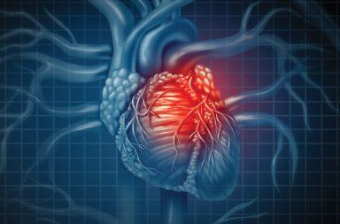 عيوب القلب الخلقية: الأسباب والعلاج - وجود خلل في القلب عند الولادة - جهاز الموجات فوق الصوتية في أثناء الحمل - ألم في الصدر