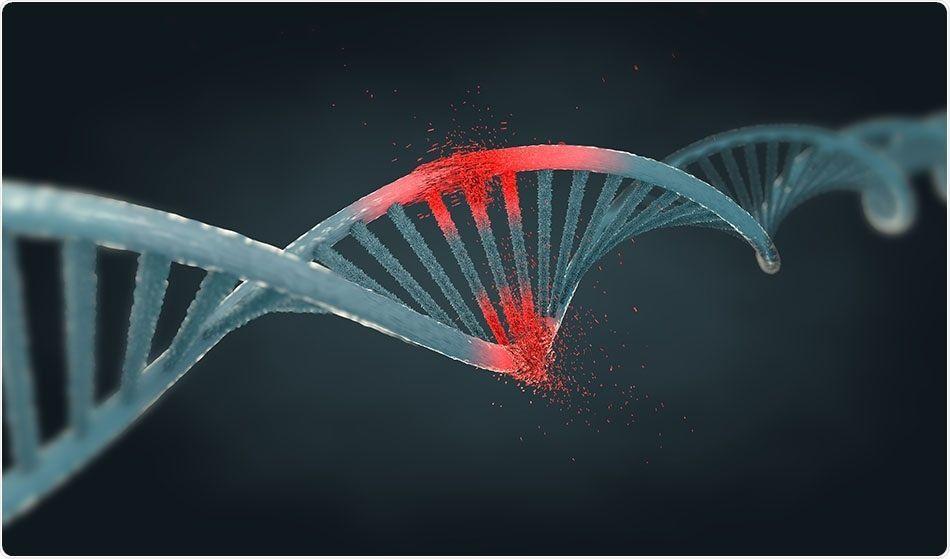 انتاج أدوية مضادة للسرطان في بيوض الدجاج !