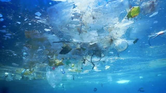 طريقة لغسل الملابس قد تخفف من تلوث المحيطات - 13 ألف طن من الألياف الدقيقة - الملوثات الموجودة في المياه الأوروبية - تلوث المياه