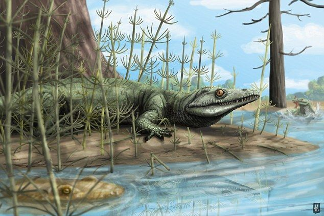 العصر الترياسيي او الثلاثي ( ظهور الديناصورات - غزو الزواحف - الانقراض الصغير )
