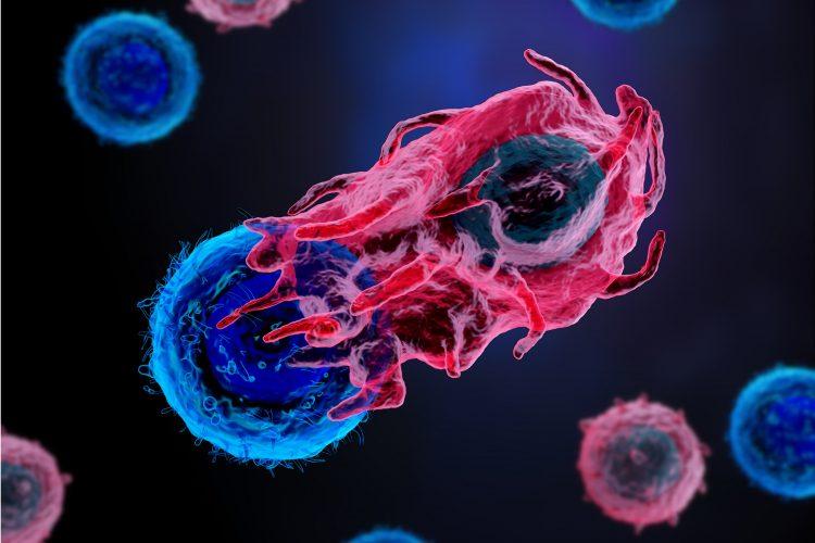 العلاج المناعي للسرطان: أنواعه وآلية عمله - المعالجة المناعية في علاج السرطان - القضاء على الأمراض مثل السرطان - الأساليب العلاجية