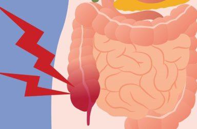 غازات الجهاز الهضمي