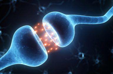 الاتصالات العصبية المخ الخلايا محور عصبي