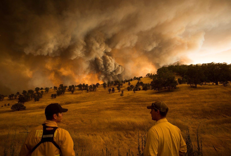 تقرير صادم: واحد من كل خمسة بلدان مهدد بانهيار النظام البيئي